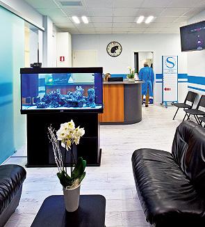studio dentistico odontoiatra dentista provincia di Treviso